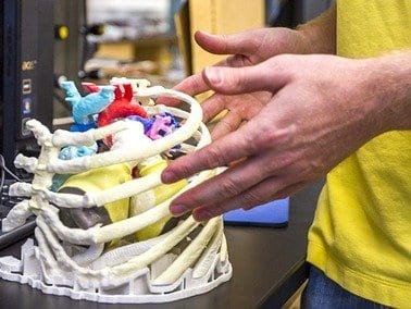 Frakes examines a 3-D print of an optimized, patient-specific artificial heart that was virtually implanted into a pediatric patient. Photo by: Jessica Hochreiter/ASU