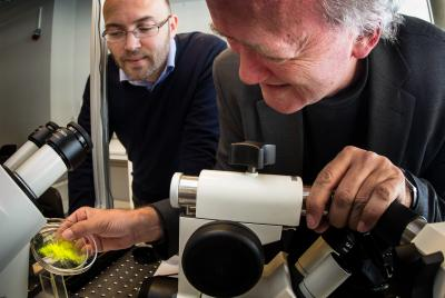 Paul Dommersnes, left, from the University of Paris, Diderot, and Jon Otto Fossum, from the Norwegian University of Science and Technology, were among the team that has come up with a novel way to create patchy capsules. Credit: Photo: Per Harold Olsen