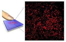 Sweaty Hands? New Fingerprinting Method Takes Pore Prints