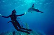 Meet The Pioneering Female Scientist And Explorer Who Is Bearing Witness To The Ocean's Destruction