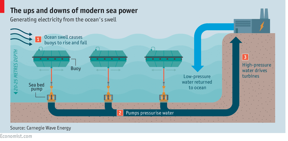 a new project off the coast of australia may make wave power a rh innovationtoronto com wave power generator diagram Wave Power How It Works