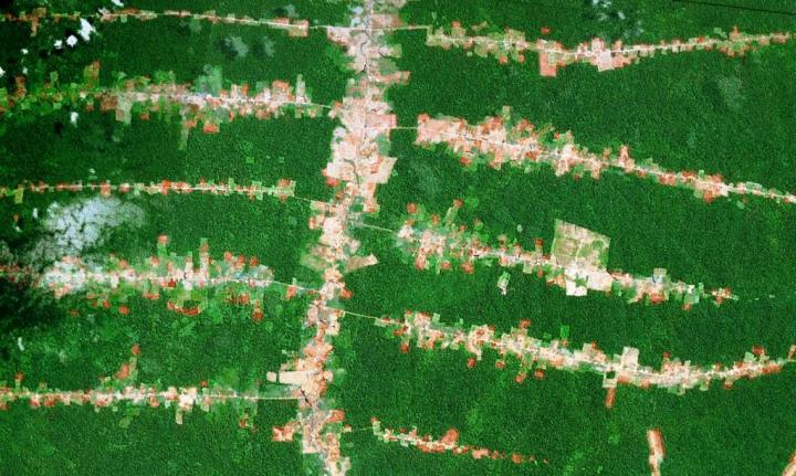 In the Amazon, 95 percent of all deforestation occurs within 5 kilometers of a road. CREDIT Google Earth