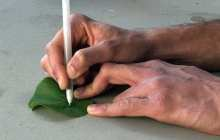 Pens filled with high-tech inks for Do It Yourself sensors