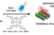 Using Light to Treat Alzheimer's Disease - Photodynamic Therapy