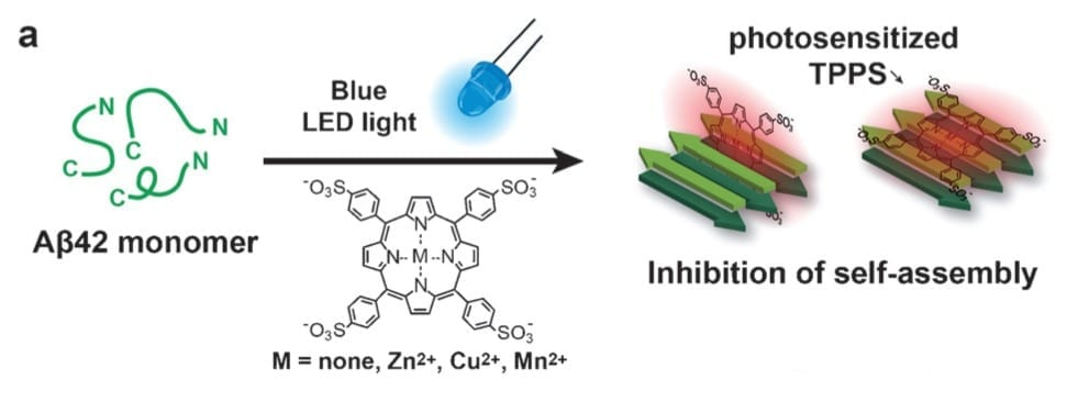 Deposits of Beta-Amyloid in Fruit Flies Stopped by Using Porphyrin and Blue LED Lights