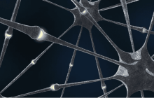 """Physicists build """"electronic synapses"""" for neural networks"""