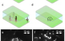 System that creates on-demand 'nanotube forests,' could help create electronic devices