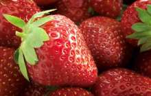 Biocompatible silk keeps fruit fresh without refrigeration