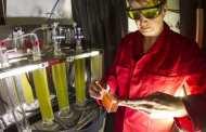 LED lighting stimulates microalgae to produce everything from food to fuel