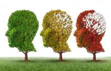 Small trial shows memory loss from Alzheimer's disease can be reversed