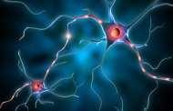 Regenerating Memory with Neural Stem Cells