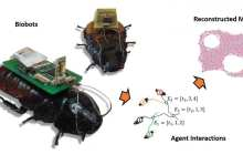 Using UAVs and insect cyborgs to map disaster areas