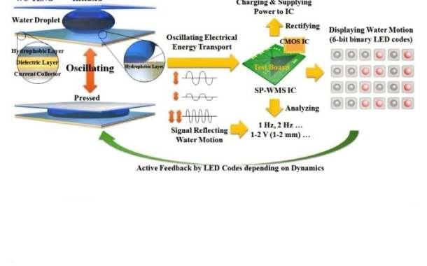 Self-sustaining sensor platform for environmental monitoring need no external power source