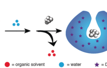 Self-destroying nanosubmarine delivers and releases drugs for cells