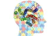 New test for rapid identification of proteins involved in the development of a number of diseases including Alzheimer's