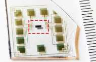 World's first complementary electrochemical logic circuits that can function stably for long periods in water