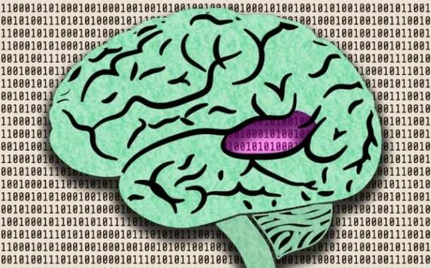 A deep neural network can perform sensory tasks that matter to humans and that do so at human levels