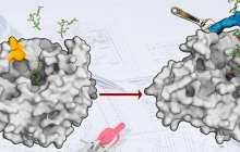 A new technology for enzyme design means new opportunities