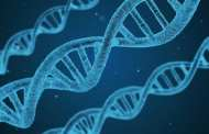 A single corporation has registered nearly half of all existing patents associated with genes from marine organisms