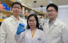 Quick, accurate, and inexpensive screening of diseases with new test kit