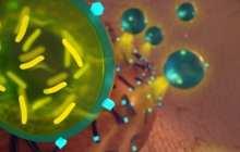 Probiotics and antibiotics join forces to eradicate drug-resistant bacteria