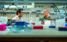 A small chemical change makes the difference between mice that are healthy and mice with insulin resistance and fatty liver