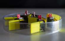 Robots built entirely from smaller robots known as smarticles