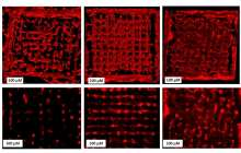 A high-resolution bioprinting process with completely new materials