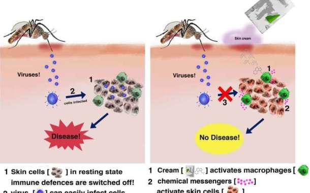 Could a skin creme prevent mosquito-borne diseases?