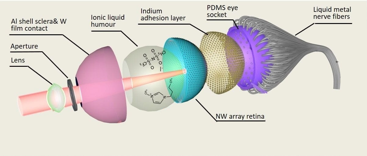 Structure of the Electrochemical Eye (EC-Eye) developed at HKUST