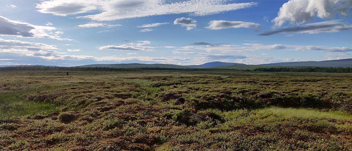 Thawing permafrost releases volatile organic compounds into the air. One of the biggest uncertainties in modelling climate change is the effect aerosols have on global warming.