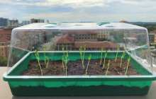 Transforming farming with self-watering soil
