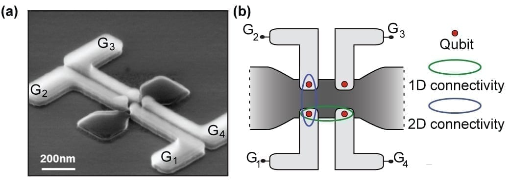 """(a) Scanning electron image of one of the Foundry-fabricated quantum dot devices. Four quantum dots can be formed in the silicon (dark grey), using four independent control wires (light grey). These wires are the control knobs that enable the so called quantum gates. (b) Schematic of the two-dimensional array device. Each Qubit (red circle) can interact with its nearest neighbor in the two-dimensional network, and circumvent a Qubit that fails for one reason or other. This setup is what """"second dimension"""" means."""