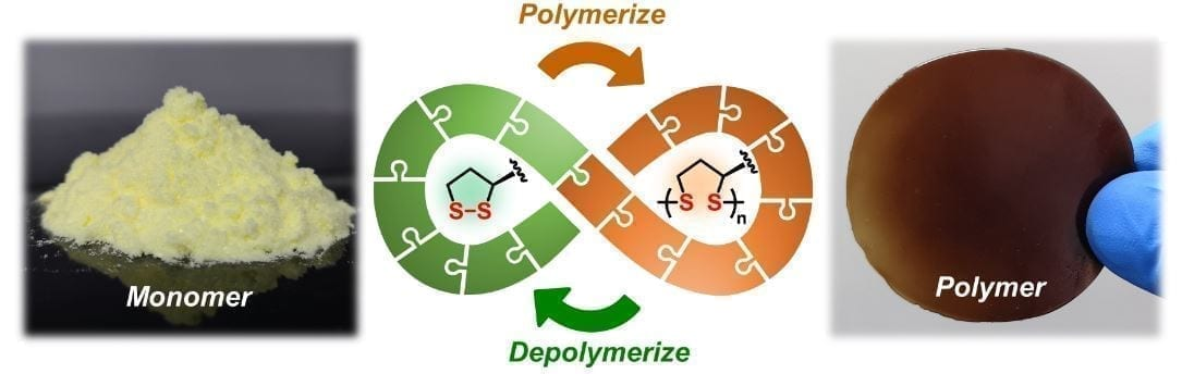 Scientists from the University of Groningen (The Netherlands) and the East China University of Science and Technology (ECUST) in Shanghai produced different polymers from lipoic acid, a natural molecule. These polymers are easily depolymerized under mild conditions. Some 87 percent of the monomers can be recovered in their pure form and re-used to make new polymers of virgin quality. Credit: Qi Zhang