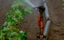 Affordable smart irrigation begins with a standard digital camera and an AI algorithm to monitor soil moisture