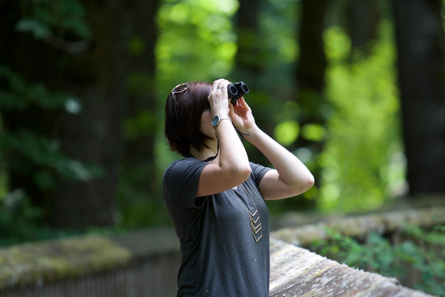Volunteer monitoring programs, such as eBird, typically rely on observations made by nonscientist members of the public. CREDIT Kayla Farmer