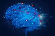 Reparative hydrogel mimics the composition and mechanics of the brain to help severe TBI
