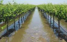 Using floodwaters to combat ongoing drought