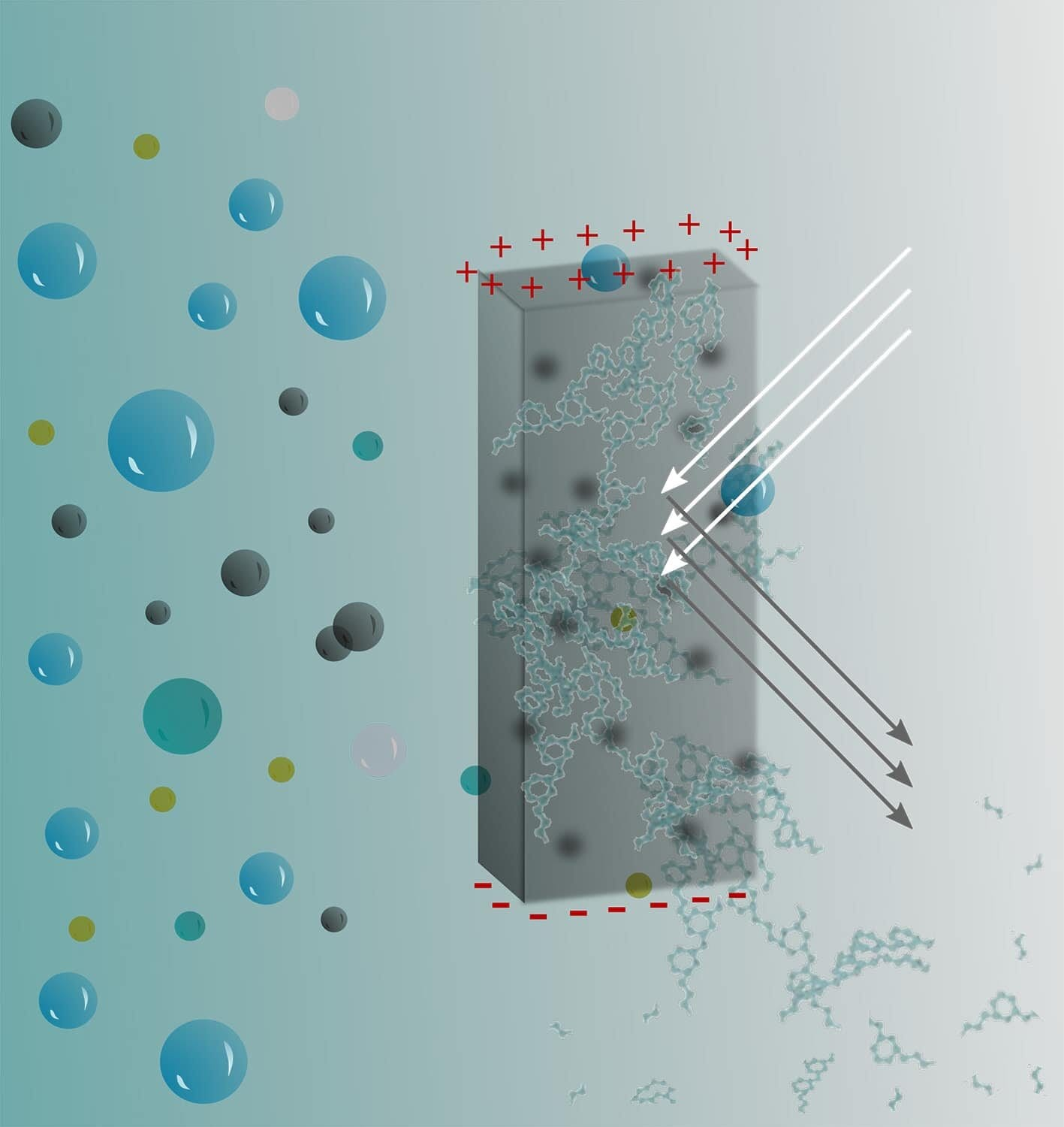 A graphic illustrates how bio-hydrogels respond to external stimuli and eventually can biodegrade in the environment.