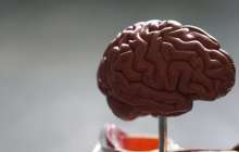 Monitoring brain activity without surgery or implants using tiny injectable sensors