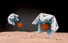 Trapping viruses and rendering them harmless with nano-objects made of DNA