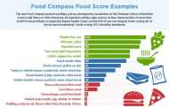 New nutrient profiling system ranks healthiness of foods from first to worst