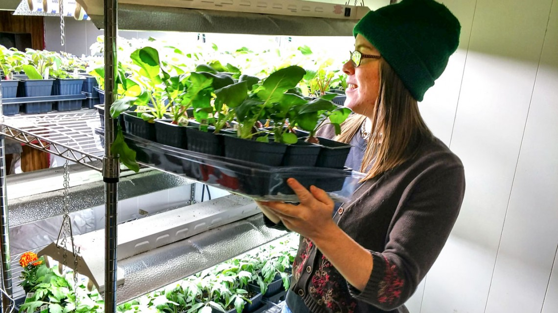 Soil scientist Margaret Ball M.S. '16, of Bio365, tends to plants grown in the biochar made from manure.