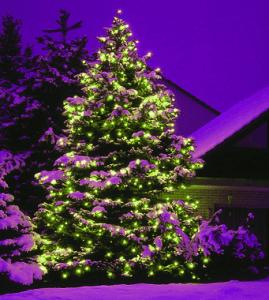 Besinnliche Bilder Weihnachten.Frohe Und Besinnliche Weihnachten Innovative Trends