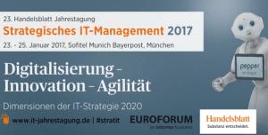 Strategisches IT-Management 2017