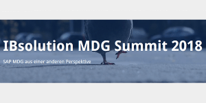 IBsolution MDG Summit 2018