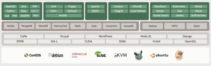 Verfügbares Ökosystem (Quelle: Oracle)