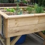 Le potager en hauteur permet de jardiner tranquillement sans se baisser.