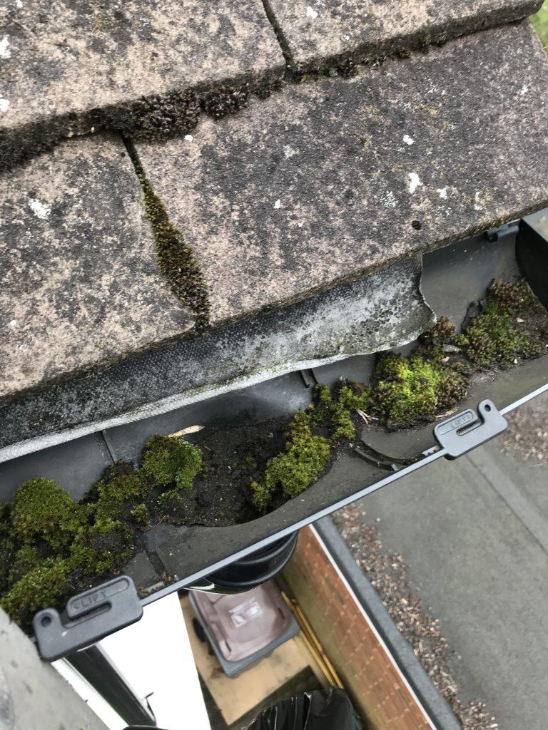 Gutter Cleaning near me