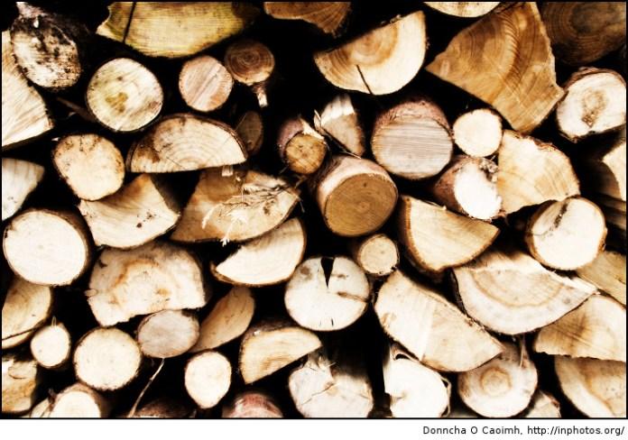 i got wood